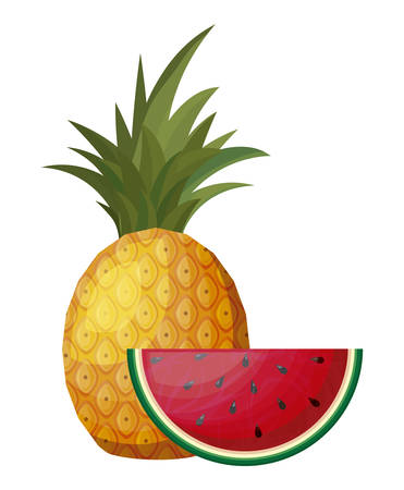 fresh pineapple with slice of watermelon vector illustration design