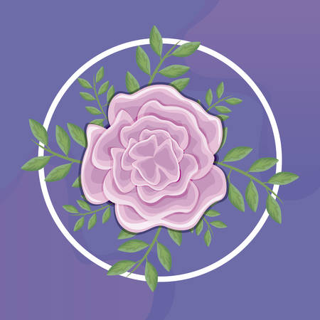 beautiful flowers with branches and leafs vector illustration design Illustration