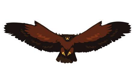 beautiful eagle flying majestic bird vector illustration design Ilustrace
