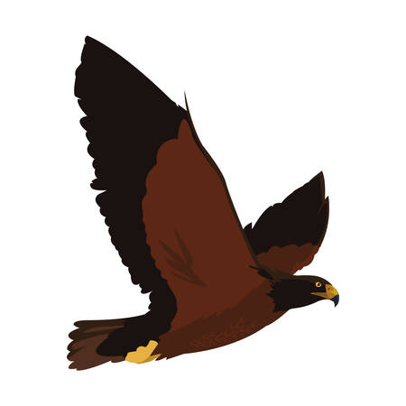 beautiful eagle flying majestic bird vector illustration design Çizim