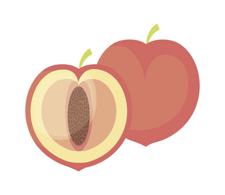 peaches fruits healthy icons vector illustration design Zdjęcie Seryjne - 122746276