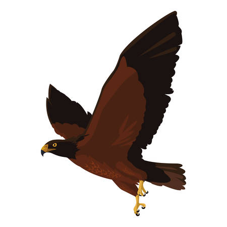 beautiful eagle flying majestic bird vector illustration design Иллюстрация
