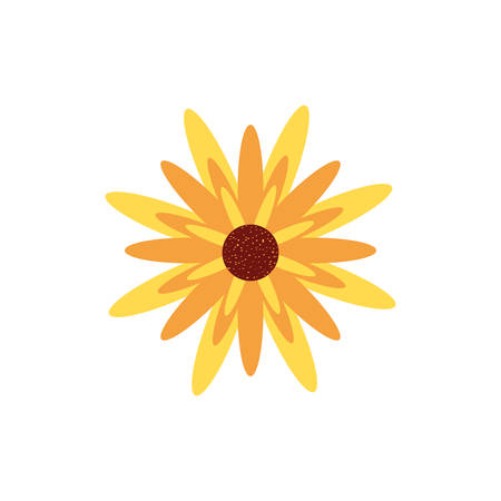 beautiful flower nature isolated icon vector illustration design