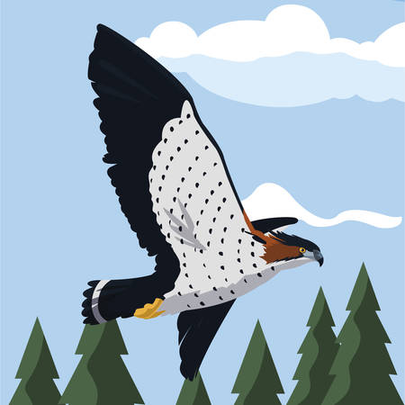 beautiful hawk flying majestic bird in the landscape vector illustration design Ilustração