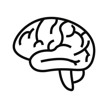 human brain organ on white background vector illustration Ilustração