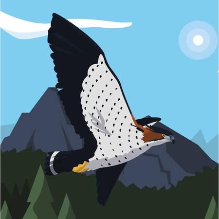 beautiful hawk flying majestic bird in the landscape vector illustration design Ilustrace