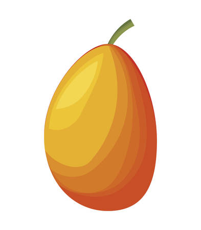 fresh mango fruit healthy vector illustration design