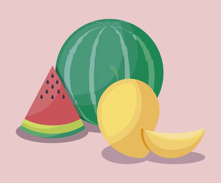 fresh mangoes with watermelons fruits vector illustration design