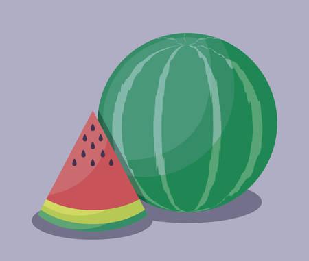fresh healthy watermelons fruits vector illustration design Stock Illustratie