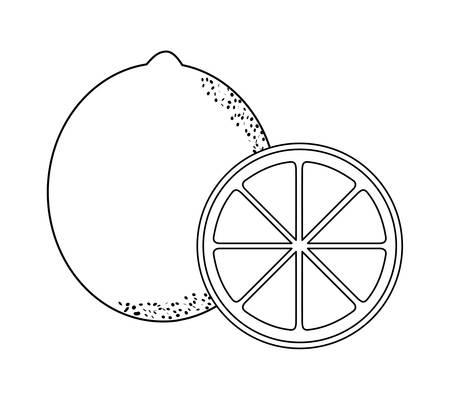 fresh oranges fruits isolated icon vector illustration design Ilustração