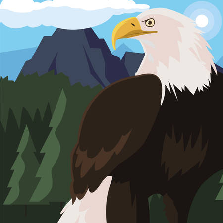beautiful bald eagle animal in landscape vector illustration design Ilustracja