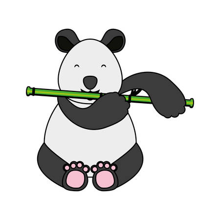 bear panda animal with bamboo icon vector illustration design