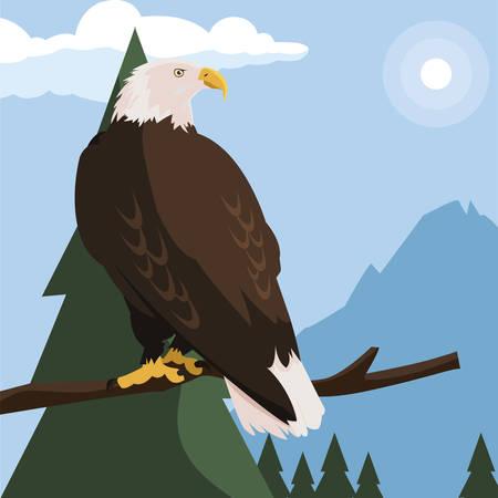 beautiful bald eagle in tree branch landscape scene vector illustration design Ilustracja