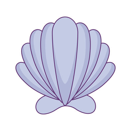 sea shell isolated icon vector illustration design