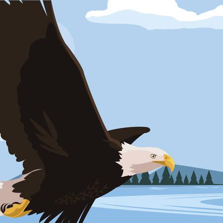 beautiful bald eagle flying in the lake scene vector illustration design Ilustracja