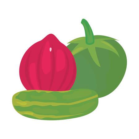 red onion cucumber tomato fresh food vector illustration Ilustracja