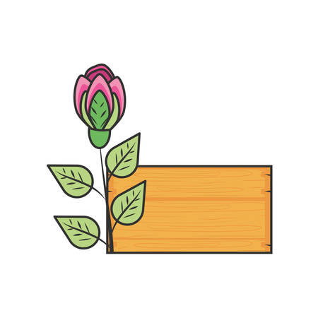 label wooden with rose natural and leafs vector illustration design