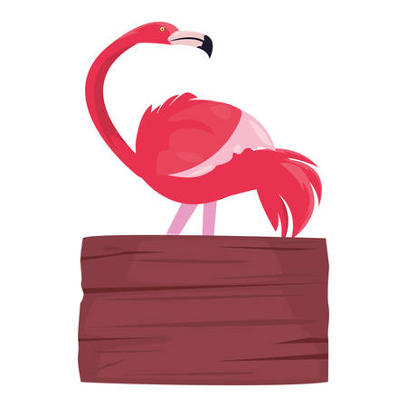 summer time holiday flamingo wooden board vector illustration