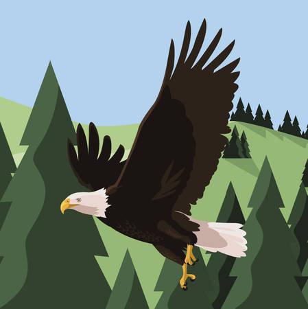 Beautiful bald eagle flying in the landscape Illustration