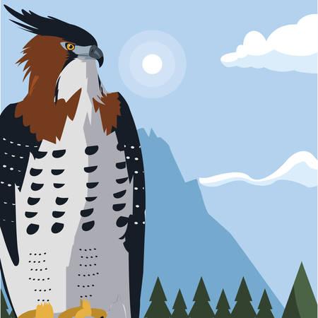 Beautiful hawk majestic bird in the landscape