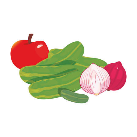 garlic red onion cucumber apple fresh food vector illustration