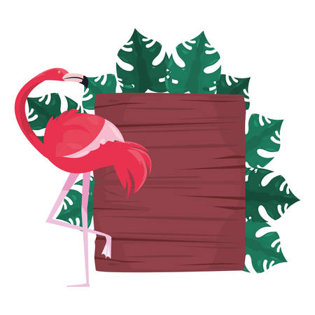 summer time holiday flamingo wooden board foliage   vector illustration