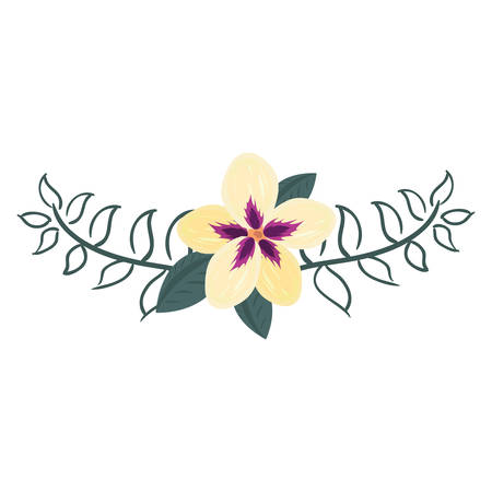 floral flowers leaves decoration vector illustration dcesign vector illustration