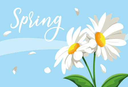 beautiful spring flowers scene nature vector illustration design