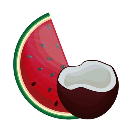 fresh healthy slice watermelon with coconut vector illustration design