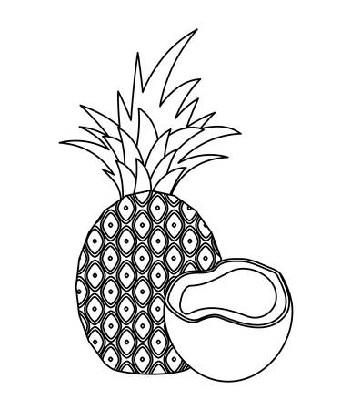 fresh pineapple with coconut fruits vector illustration design Ilustrace
