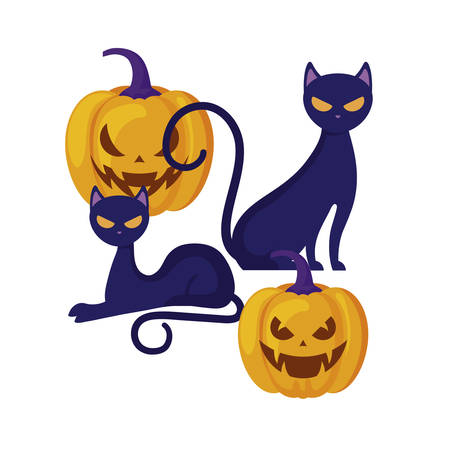 halloween pumpkins with cats isolated icon vector illustration design