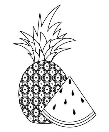 fresh pineapple with slice of watermelon vector illustration design