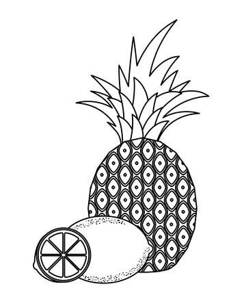 fresh pineapple with lemons fruits vector illustration design Ilustrace