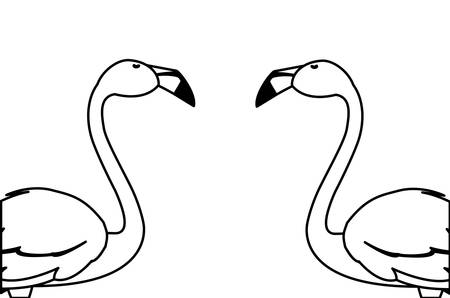 exotic flemish couple birds with heads up vector illustration design Stock Illustratie