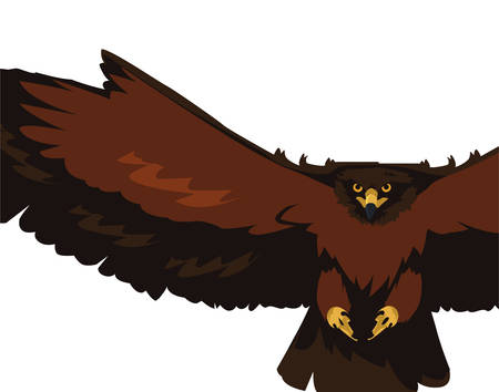 beautiful eagle flying majestic bird vector illustration design  イラスト・ベクター素材