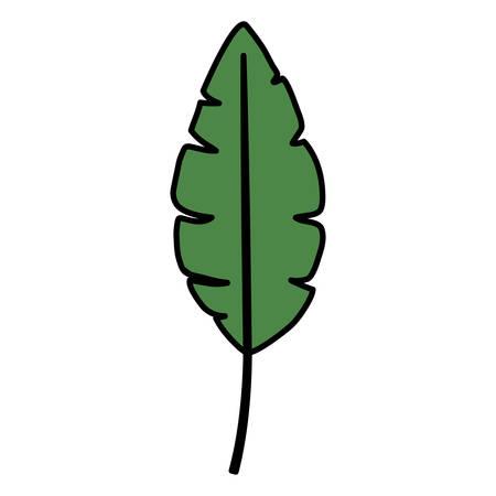tropical leaf ecology icon vector illustration design