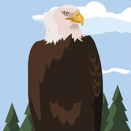 beautiful bald eagle animal in landscape vector illustration design Illustration