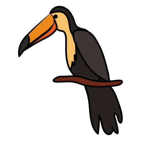 toucan exotic bird icon vector illustration design Фото со стока - 130074796
