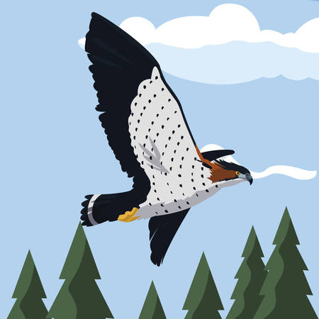 beautiful hawk flying majestic bird in the landscape vector illustration design Illustration
