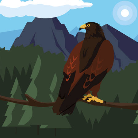 beautiful eagle in tree branch majestic bird vector illustration design
