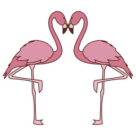 exotic pink flemish couple birds with romantic pose vector illustration design Illusztráció