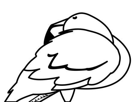 exotic flemish bird sleeping vector illustration design