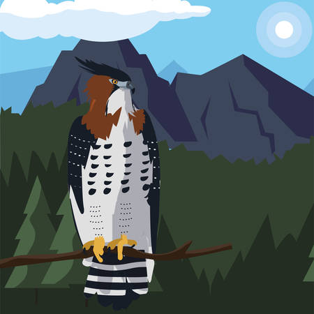 beautiful hawk in tree branch landscape scene vector illustration design Ilustração