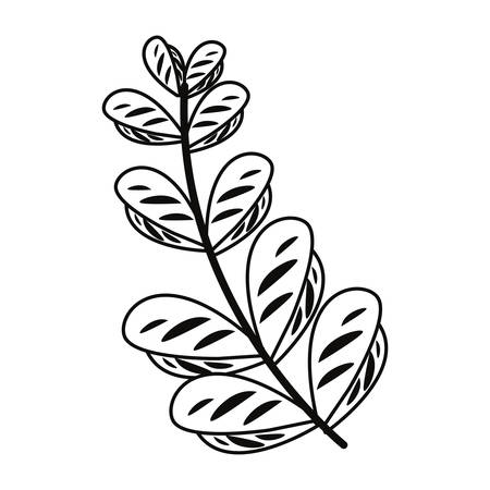 branch leaves nature icon on white background vector illustration