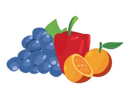 grapes orange pepper bell fresh food vector illustration