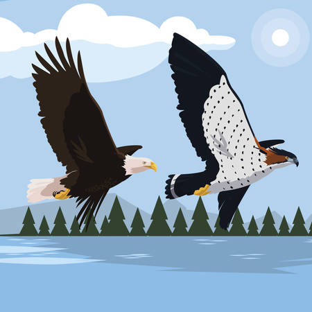 beautiful bald eagle and hawk flying in the landscape vector illustration design