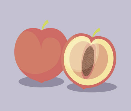 peaches fruits healthy icons vector illustration design