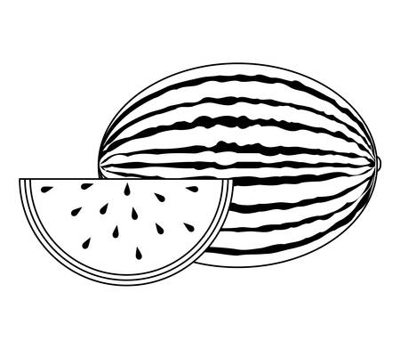 fresh healthy watermelon fruit and slice vector illustration design