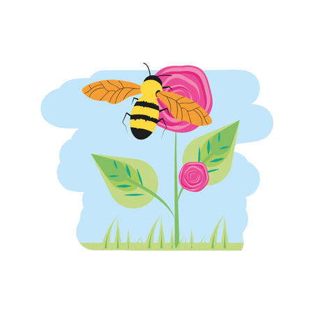 beautiful roses natural in branch with leafs and bee vector illustration design