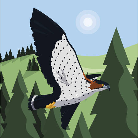 beautiful hawk flying majestic bird in the landscape vector illustration design Stock Illustratie